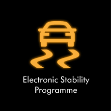 electronic-stability-programme-icon